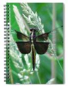 Widow Skimmer Dragonfly Spiral Notebook