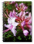 Wild And Native Pink Azalea Spiral Notebook