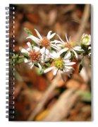 Wild Astors Spiral Notebook