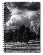Wild-beauty Spiral Notebook