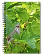 Wild Bird In A Currant Bush. Spiral Notebook