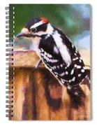 Wild Birds - Downy Woodpecker  Spiral Notebook