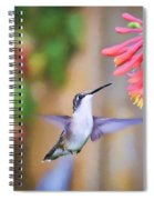 Wild Birds - Hummingbird Art Spiral Notebook