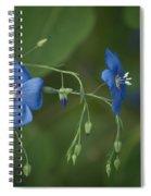 Wild Blue Spiral Notebook