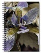 Wild Blue Iris Spiral Notebook