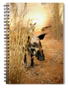 Wild Boar Spiral Notebook