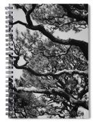 Wild Branches Spiral Notebook