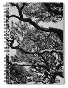 Wild Branches Spiral Notebook