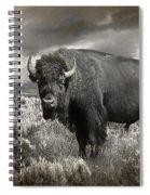 Wild Buffalo In Yellowstone Spiral Notebook