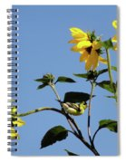 Wild Canary Sunflowers Spiral Notebook
