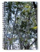 Wild Cherry Tree Blossoms On Verona Spiral Notebook