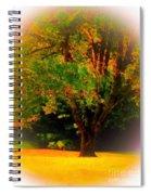 Wild Cherry Tree In Summer Sun Spiral Notebook
