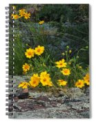 Wild Coreopsis On Hughes Mountain 1 Spiral Notebook