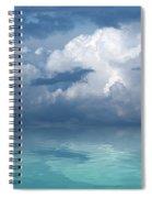 Wild Days Spiral Notebook