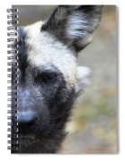 Wild Dog Spiral Notebook