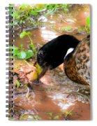 Wild Duck Mallard 1 Spiral Notebook