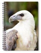 Wild Eagle Spiral Notebook