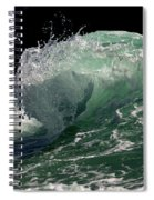 Wild Edge Spiral Notebook