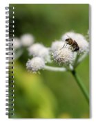 Wild Flower Bluff Lake Ca 3 Spiral Notebook