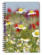 Wild Flowers Field Nature Spring Scene Spiral Notebook