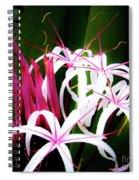 Wild Flowers In Hawaii Spiral Notebook