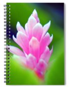 Wild Ginger Spiral Notebook