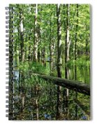 Wild Goose Woods Pond II Spiral Notebook