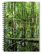 Wild Goose Woods Pond Iv Spiral Notebook
