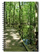 Wild Goose Woods Pond Vi Spiral Notebook