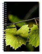 Wild Grape Leaves Spiral Notebook