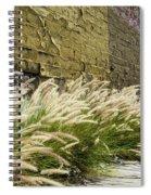 Wild Grass Along An Alley Wall Spiral Notebook