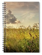 Wild Grass And A Lonely Cloud Spiral Notebook