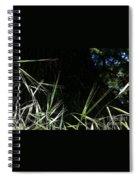 Wild Grass In The Sunlight Spiral Notebook