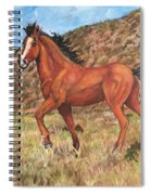 Wild Horse In Virginia City, Nevada Spiral Notebook
