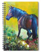 Wild Horse On Dartmoor - Roaming Free Spiral Notebook