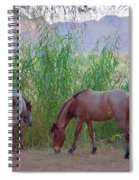 Wild Horses At Twilight Spiral Notebook