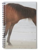 Wild Horses On The Beach 2 Spiral Notebook