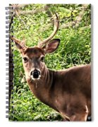 Wild In The Country Spiral Notebook