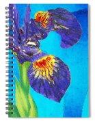Wild Iris Art By Sharon Cummings Spiral Notebook