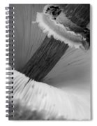 Wild Mushroom- B And W Spiral Notebook