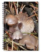 Wild Mushrooms Spiral Notebook
