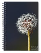 Wild Nature Spiral Notebook