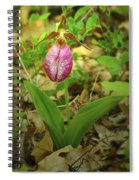 Wild Orchid Spiral Notebook