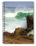 Wild Pacific Two Spiral Notebook