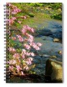 Wild Piedmont Azalea 4 Spiral Notebook