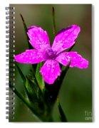 Wild Pink Spiral Notebook