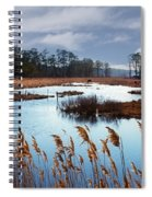 Wild Ponies Grazing Spiral Notebook