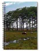 Wild Ponies Of Assateague Spiral Notebook