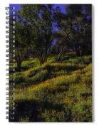Wild Poppies Spiral Notebook