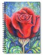 Wild Rose One Spiral Notebook